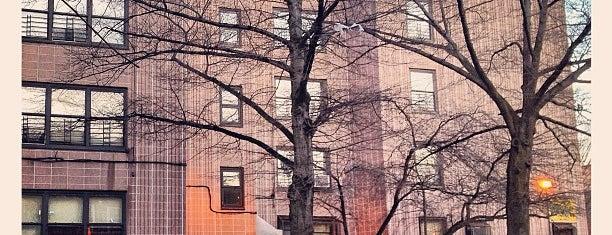 NYCHA - Stuyvesant Garden I, II is one of PRTS.
