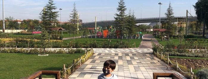 Prof.Dr. Veysel Eroğlu Parkı is one of Lugares favoritos de 🇹🇷.