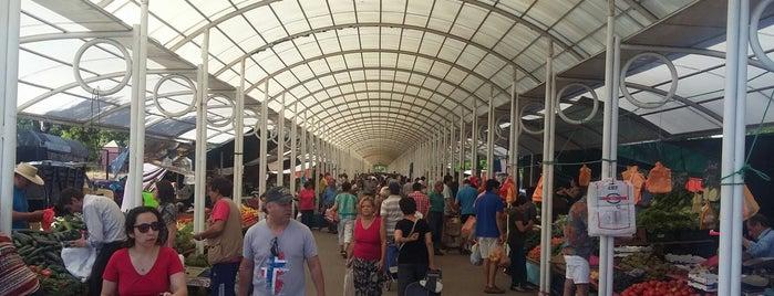 Feria Libre Costanera is one of Posti salvati di Rox.