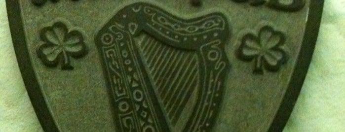 Irish Pub is one of Posti che sono piaciuti a Rhys.