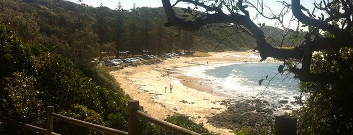 Shelly Beach is one of Tempat yang Disukai Ian.