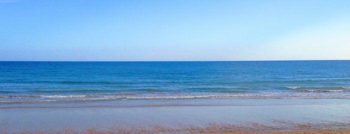 Praia da Falésia is one of Tempat yang Disukai MENU.