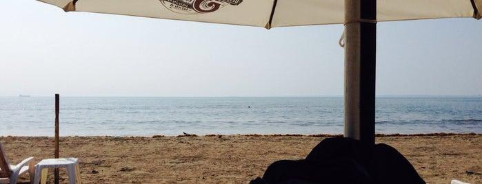 Playa Costa de Oro is one of Posti che sono piaciuti a Pippo.