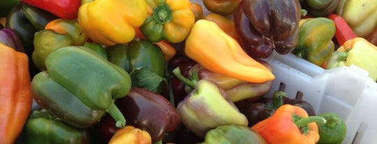 Napa Farmers Market is one of Napa Valley Favorites.