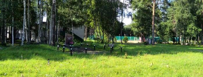 База отдыха и туризма «Лосевская» is one of Активный отдых СПб.
