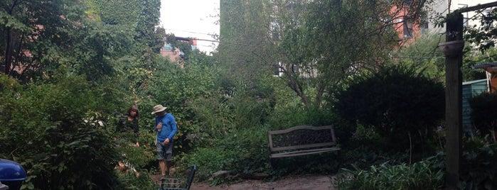 Warren St Marks Community Garden is one of สถานที่ที่ Taty ถูกใจ.