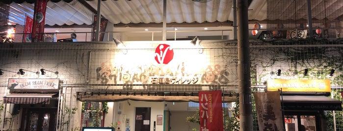 石垣島ヴィレッジ is one of Ishigaki.