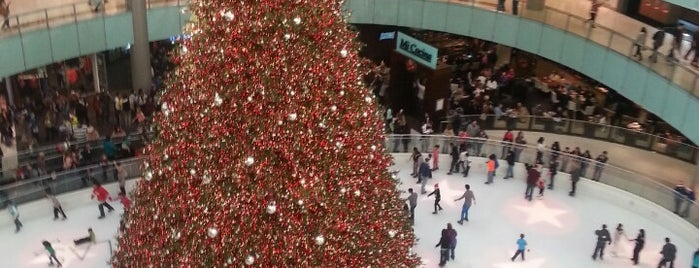 Ice Skating Center is one of 67 Things to do in Dallas Before You Die or Move.