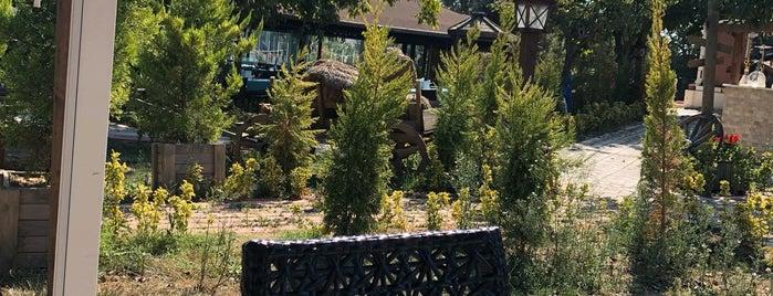Otantik Garden is one of Tempat yang Disukai Arzu.