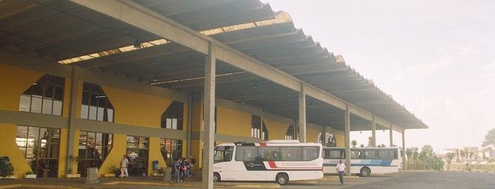 Rodoviária Dom Honorato Piazer is one of Orte, die Thaís gefallen.