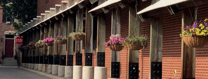 Downtown Frederick is one of สถานที่ที่ Elizabeth ถูกใจ.