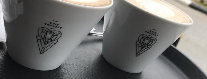 Ovis Coffees is one of สถานที่ที่ Bagcan ถูกใจ.