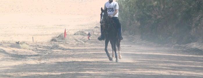 مزرعة الامير خالد بن سلطان ( اسطبل الخالدية ) is one of Riyadh.