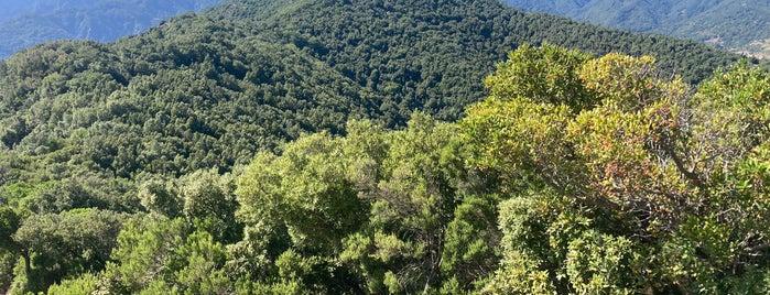Monte Tre Pizzi is one of Posti che sono piaciuti a FWB.