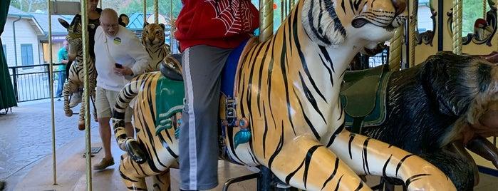 Conservation Carousel is one of Tempat yang Disukai David.
