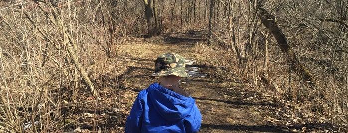 Token Creek Preserve Park is one of Debさんの保存済みスポット.