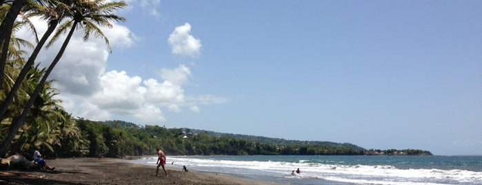 Plage De Grande Anse is one of Martinique & Guadeloupe.
