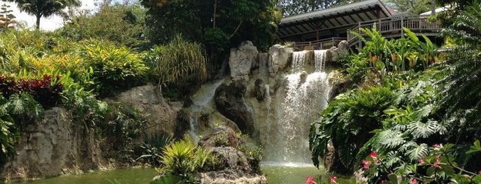 Jardin Botanique de Deshaies is one of Martinique & Guadeloupe.