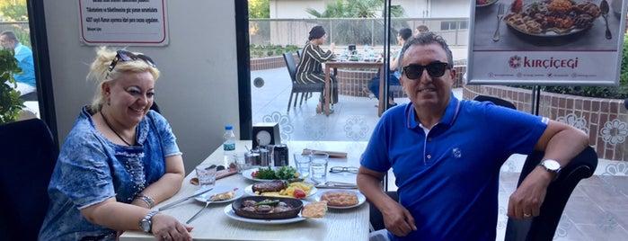 Kırçiçeği is one of สถานที่ที่บันทึกไว้ของ TC Hulya.