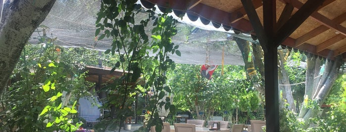 Ege' nin Yeri Köy Kahvaltısı is one of Tempat yang Disukai 🇹🇷B@yr@M🇹🇷.