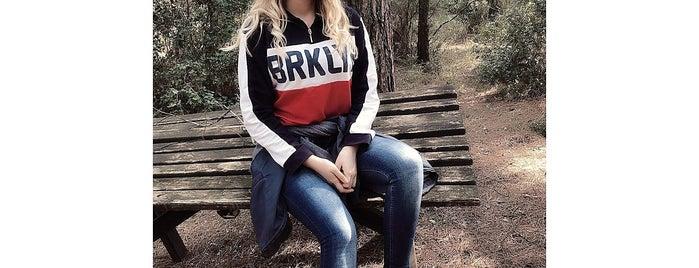 Çiçekli Köy Motocross Parkuru is one of Orte, die Gözdegsi gefallen.