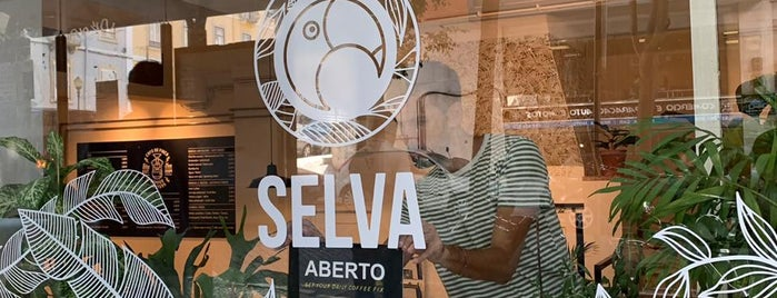 Selva is one of Potential Work Spots.