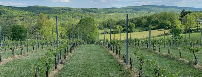 50 West Vineyards is one of Loudoun Ale Trail.