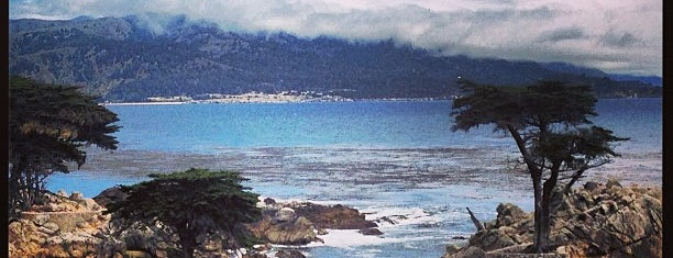 17 Mile Drive is one of California.
