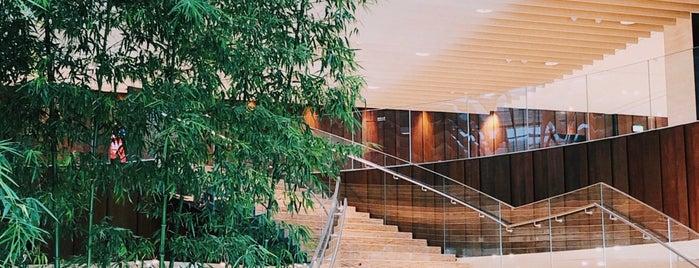 Hyatt Regency Beijing Wangjing is one of Hotels.