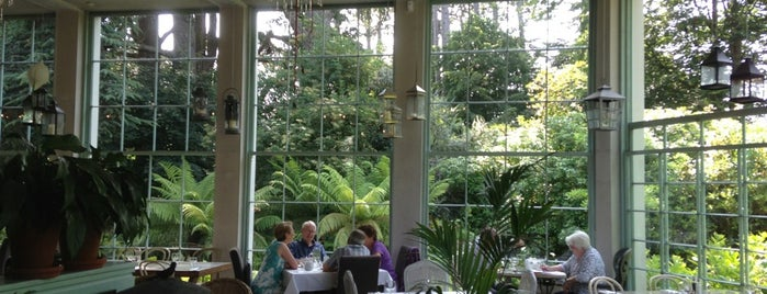 The Fern House Cafe is one of Ireland.