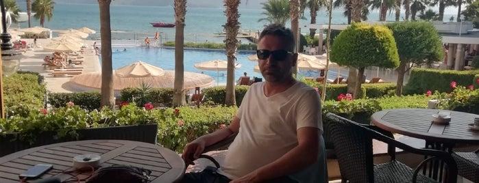 Fortezza Beach Resort is one of Merve'nin Beğendiği Mekanlar.