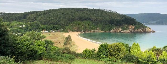 Praia de Xilloi is one of To do's Viveiro.