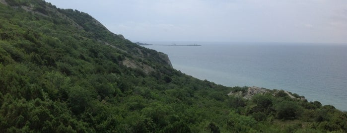 Смотровая is one of สถานที่ที่ Георгий ถูกใจ.