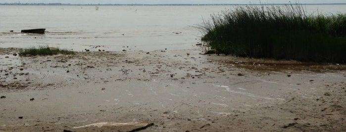 пляж ольгино is one of Galinaさんの保存済みスポット.