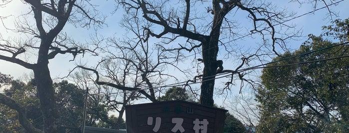 金華山リス村 is one of Posti che sono piaciuti a Masahiro.