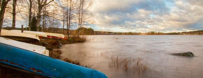 Viitaniemi is one of Jyväskylän kaupunginosat.