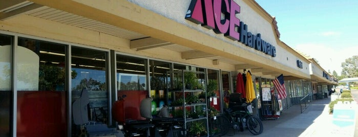Ace Hardware is one of t-town.