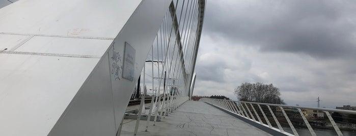 Pont Beatus-Rhenanus is one of Strasbourg.