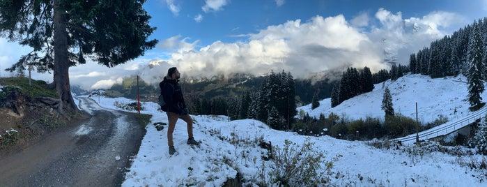 Zwitserland 🇨🇭