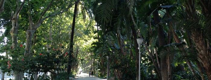 Paseo del Parque is one of Rincones de Málaga.