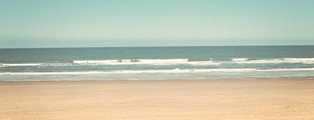 Holkham Beach is one of Del : понравившиеся места.