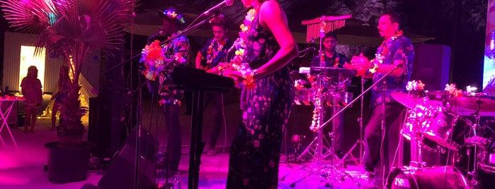 Tangerine Beach Night Club - Maxx Royal is one of Lieux qui ont plu à Gnr.