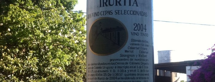 Bodega Familia Irurtia is one of Carmelo.