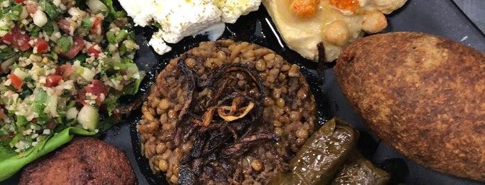 Don Anuar, Comida Libanesa Tradicional is one of New flavors.