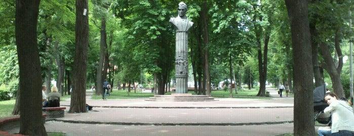 Парк ім. Котляревського is one of Timotei nature places Kiev.