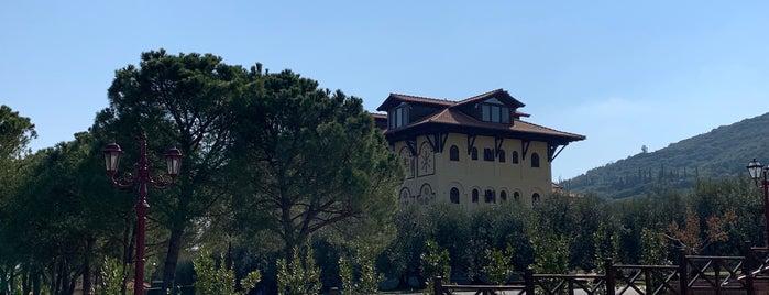 Monastery of Saint John the Theologian is one of สถานที่ที่ Lily ถูกใจ.