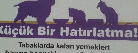 Titizce Türk Mutfağı is one of Locais salvos de TC İbrahim.