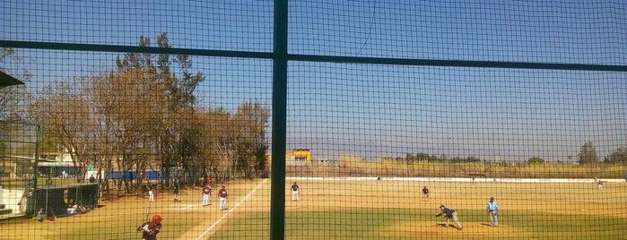 Campo de Baseball San Bartolo Coyotepec is one of สถานที่ที่ Paris ถูกใจ.