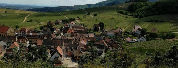 Niedermorschwihr is one of (Temp) Best of Alsace.