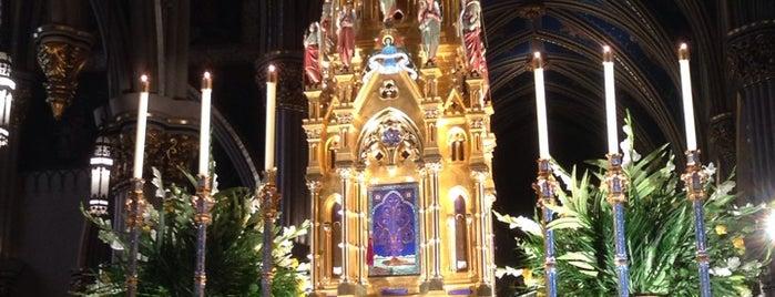 Basilica of the Sacred Heart is one of สถานที่ที่ Trish ถูกใจ.